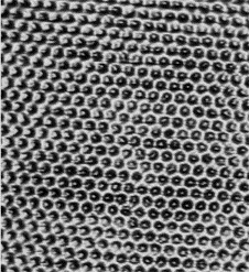 graphite-surface-stm.png